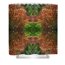 Abstract 164 Shower Curtain by J D Owen