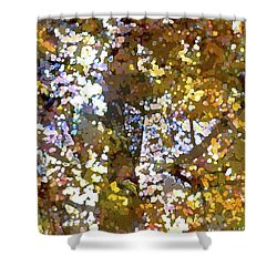 Abstract 293 Shower Curtain
