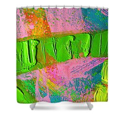 abstract 6814 Diptych Cropped XIV Shower Curtain by John  Nolan
