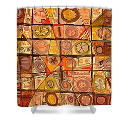 Abstract Art Sixty-five Shower Curtain