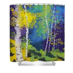 Abstract Aspens Shower Curtain by Dana Strotheide