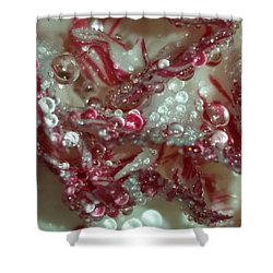 Abstract Carnation 2 Shower Curtain