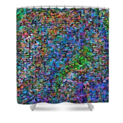 Abstract Colorfull  Art Shower Curtain