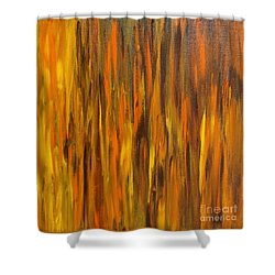 Abstract Fireside Shower Curtain