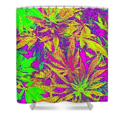 Abstract Green N Pink Shower Curtain