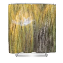 Shower Curtain featuring the photograph Abstract Haze by Amy Gallagher