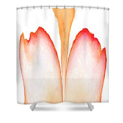 Abstract In Bloom 2 Shower Curtain