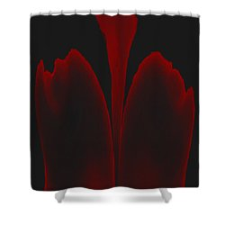 Abstract In Bloom 3 Shower Curtain