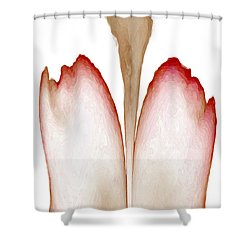 Abstract In Bloom 4 Shower Curtain