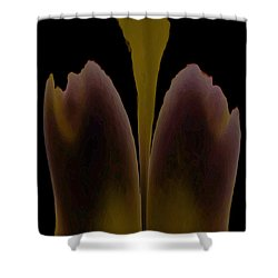 Abstract In Bloom Shower Curtain