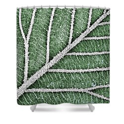 Abstract Leaf Art Shower Curtain