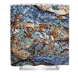 Abstract Nature Shower Curtain