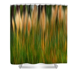Abstract Of Movement Shower Curtain
