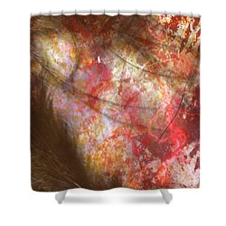 Abstract Pillow Shower Curtain
