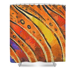 Abstract Rainbow Tiger Stripes Shower Curtain by Pixel Chimp