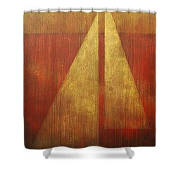 Abstract Sail Shower Curtain