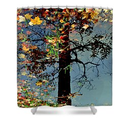 Abstract Tree Shower Curtain by Frozen in Time Fine Art Photography