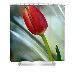 Abstract Tulip Under Glass Shower Curtain