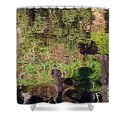 Shower Curtain featuring the photograph Abstracted Reflection by Kate Brown