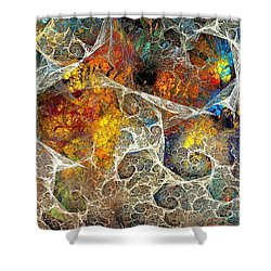 Abstraction 462-09-13 Marucii Shower Curtain
