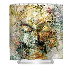 Abstraction 482-10-13 Marucii Shower Curtain