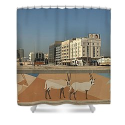 Abu Dhabi Outskirts Shower Curtain