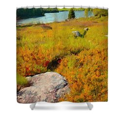 Shower Curtain featuring the painting Acadia Spring by Jeff Kolker