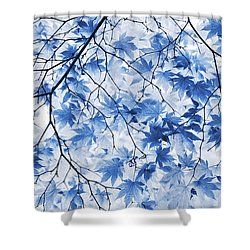 Acer Blue Shower Curtain