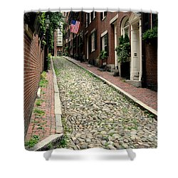 Acorn Street Boston Shower Curtain