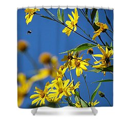 Action Shower Curtain by France Laliberte