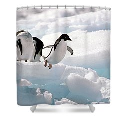 Adelie Penguins Shower Curtain by Art Wolfe