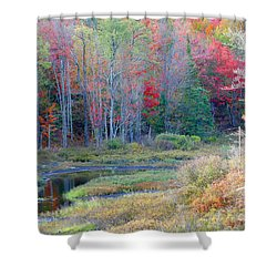Adirondack Fall Shower Curtain by Mariarosa Rockefeller