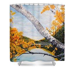 Adirondacks New York Shower Curtain by Holly Carmichael