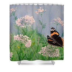 Admiral And Lace Shower Curtain