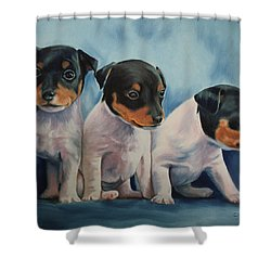 Adorable In Triplicate Shower Curtain