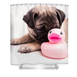 Adorable Pug Puppy With Pink Rubber Ducky Shower Curtain by Edward Fielding