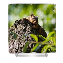 Advantage Point Shower Curtain by Optical Playground By MP Ray
