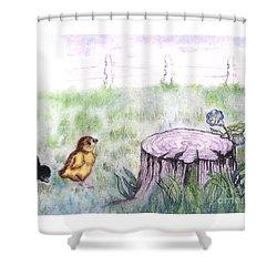 Adventurous Chicks Shower Curtain