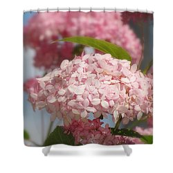 Aelise Shower Curtain by France Laliberte