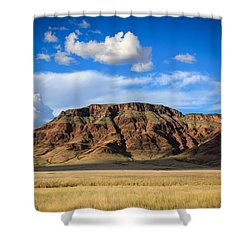 Aferican Grass And Mountain In Sossusvlei Shower Curtain