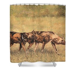 Africa Wild Dogs Shower Curtain