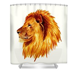 African Male Lion Shower Curtain by Michael Vigliotti