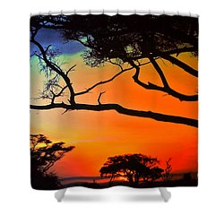 African Skies Shower Curtain by Lydia Holly