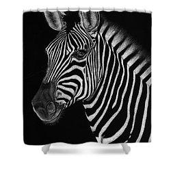 African Stallion Shower Curtain