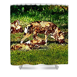 African Wild Dog Family Shower Curtain
