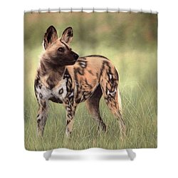 African Wild Dog Painting Shower Curtain