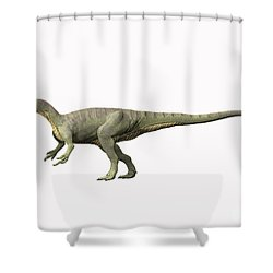 Afrovenator Abakensis, Middle Jurassic Shower Curtain by Nobumichi Tamura