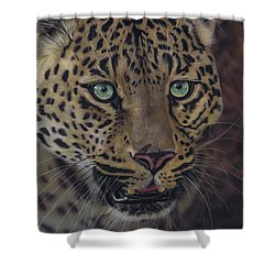 After Dark All Cats Are Leopards Shower Curtain