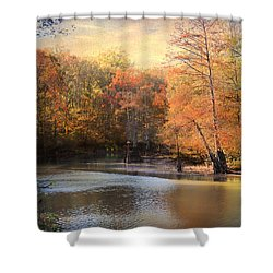 After Daybreak Shower Curtain by Jai Johnson