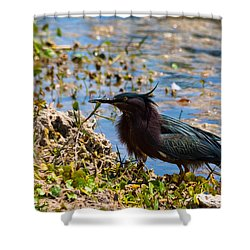 After Fishing Shower Curtain